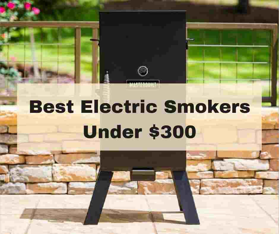 Best Electric Smokers Under 300